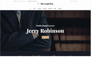 The Legal Way - Lawyer