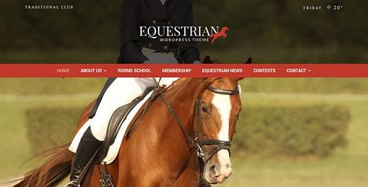 Equestrian Horses and Stables WordPress